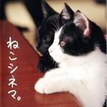 書籍『猫シネマ』